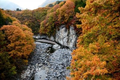 鬼怒川沿いの紅葉