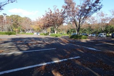 砂沼広域公園 駐車場
