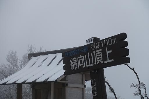 20182okukusaDSC03467.jpg