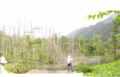 岳沢口湿原2