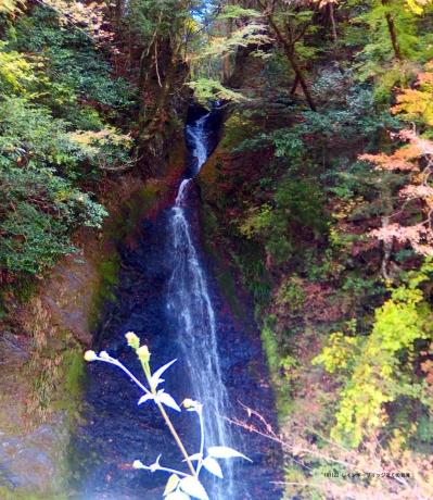 接阻峡湖の岩滝