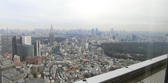 新宿ラン都庁からの眺め
