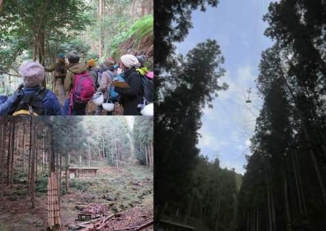 いろんな視点で森を歩こう5