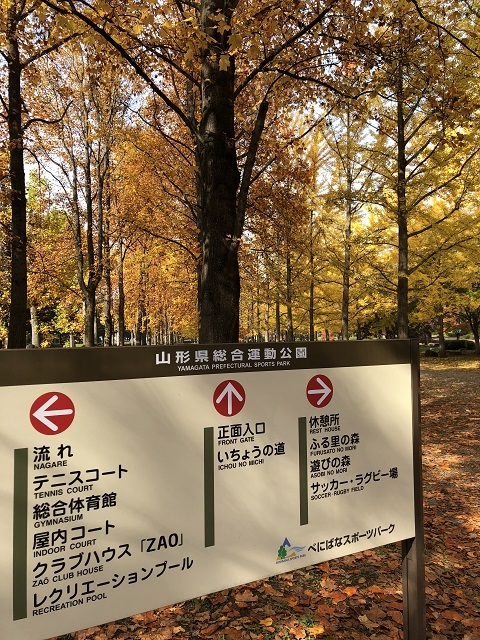 山形県総合運動公園 紅葉 2018 1