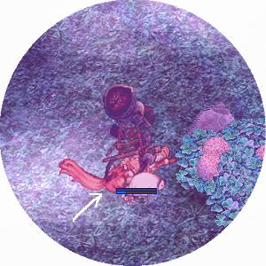 190211k.jpg
