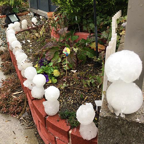 庭に雪が少し積もったので雪だるまを作りました♪⑤