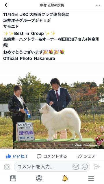 大阪西連合ドックショー5