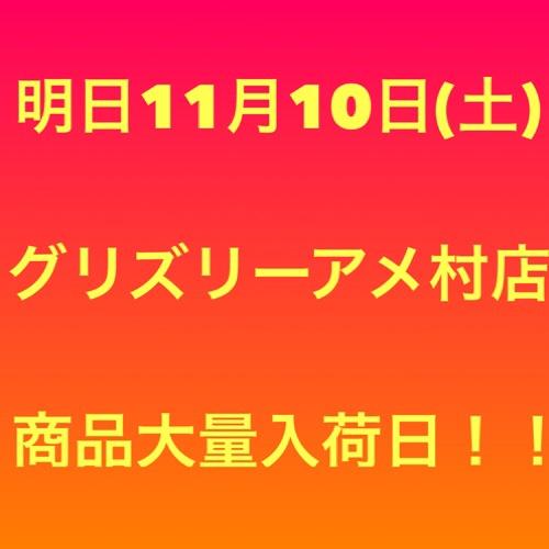 fc2blog_2018110913112801c.jpg