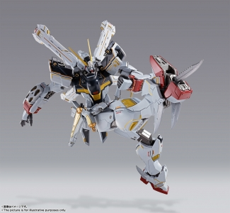 METAL BUILD クロスボーン・ガンダムX1 (13)