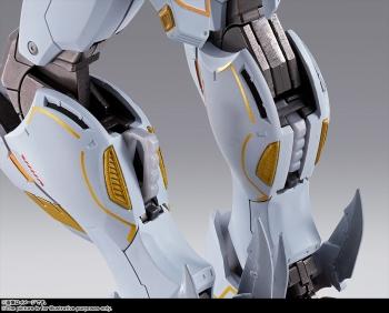METAL BUILD クロスボーン・ガンダムX1 (4)