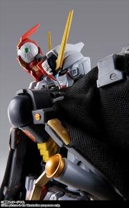 METAL BUILD クロスボーン・ガンダムX1 (6)