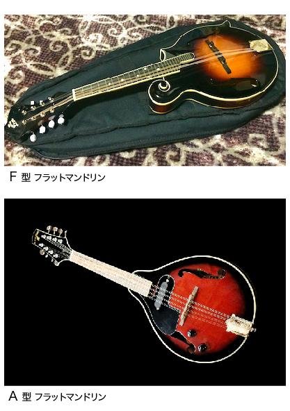 mandolin_fa.png