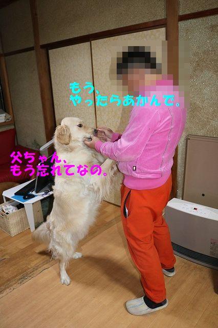 IMG_4713_20181202002027ec1.jpg