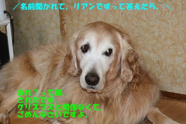 IMG_5096.jpg