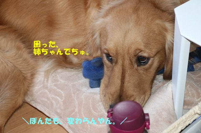 IMG_5180.jpg