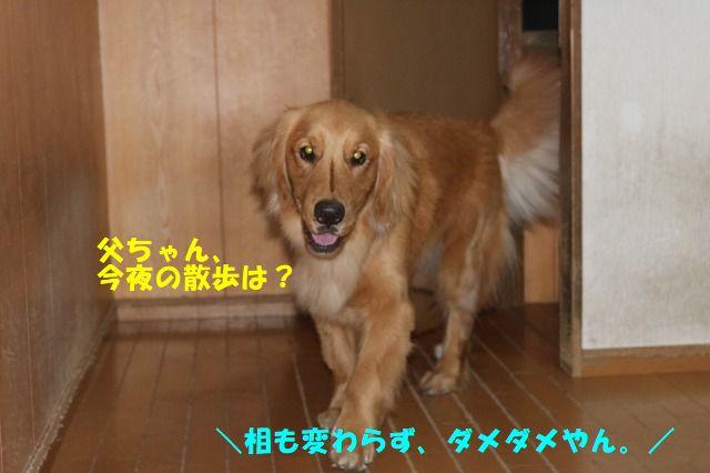 IMG_5392.jpg