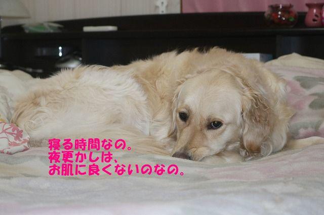 IMG_5450_20190118111303eda.jpg