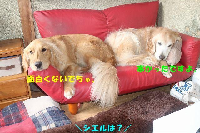 IMG_5699.jpg