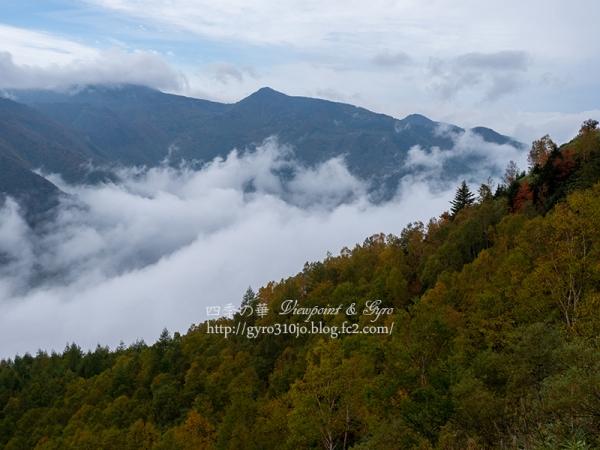 笠ヶ岳 C
