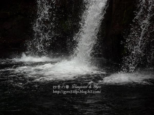 河津七滝 E