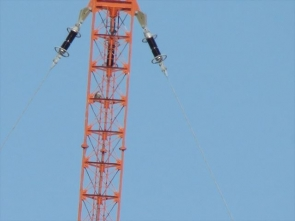 190210001 鉄塔のハヤブサ
