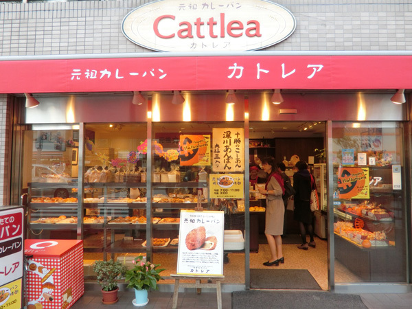 cattlea181002.jpg