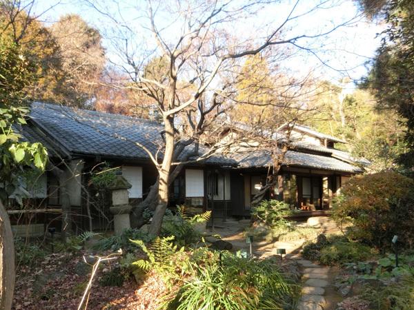 hayashi190104.jpg