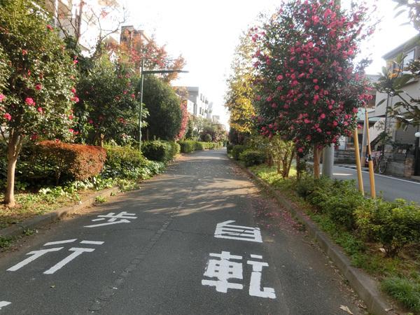shimokawara003.jpg