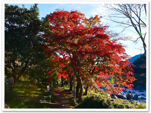 紅葉☆御岳渓谷