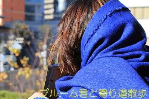 s-IMG_6377.jpg