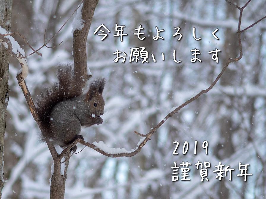 2019年賀状