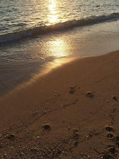 beach③
