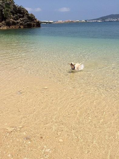 beach①