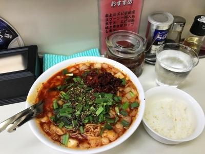 180627ビンギリ勝浦タンタン麺850円ランチはライスサービス