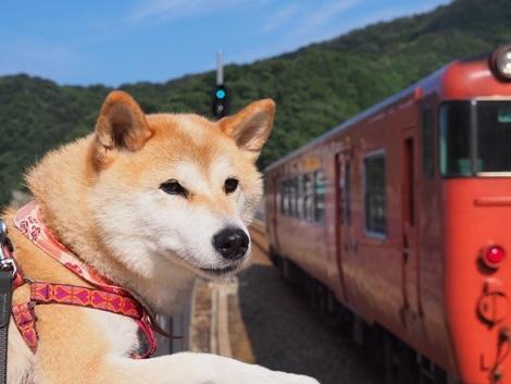電車お見送り~