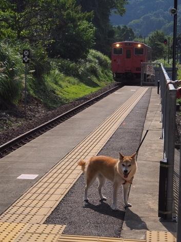 電車到着~