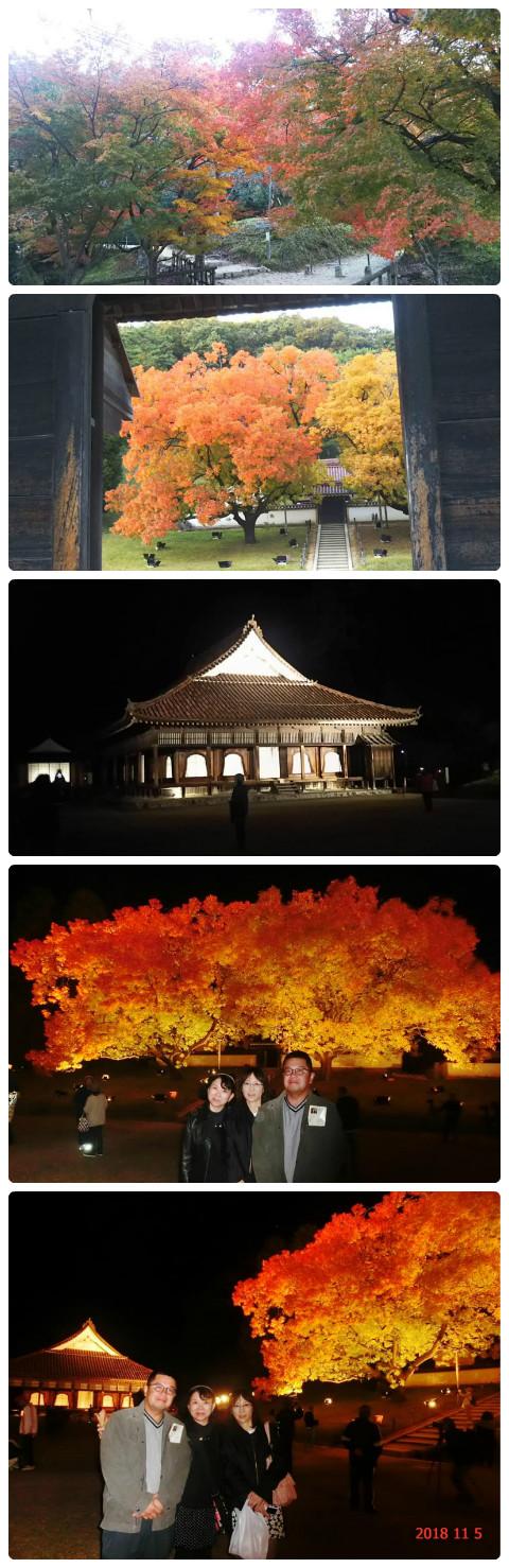 平成30年11月5日歴史文化5