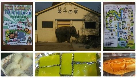 平成30年12月2日姫路動物園1