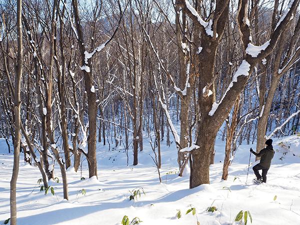 旭山記念公園でスノーシュー01