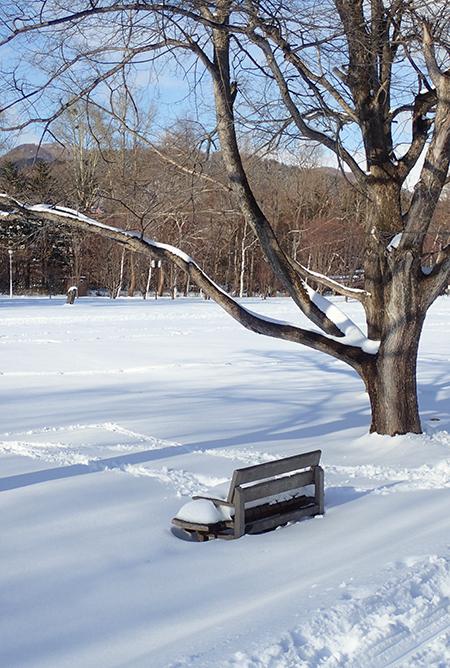 雪の真駒内公園 木のベンチ01