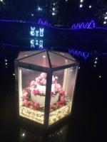 足利FP 池の花