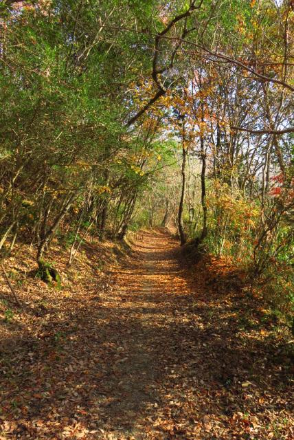 有馬富士公園への自然歩道