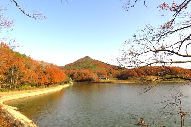 福島池と有馬富士