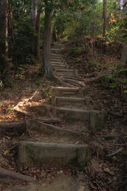 有馬富士登山道_急こう配の階段