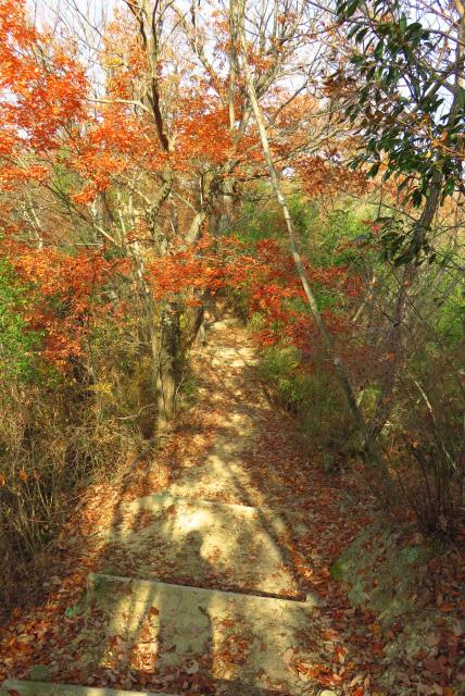 有馬富士から千丈寺湖への抜け道