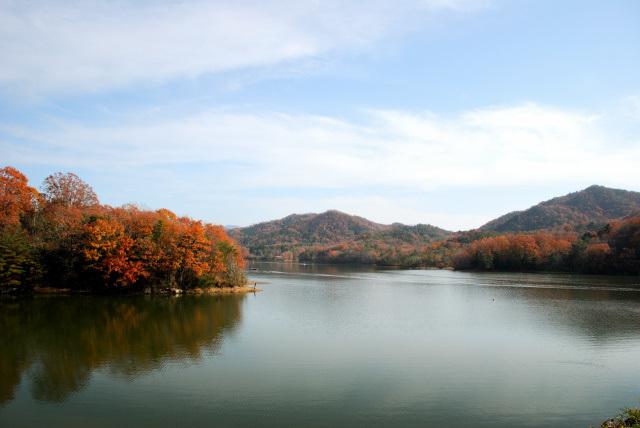 千丈寺湖の紅葉