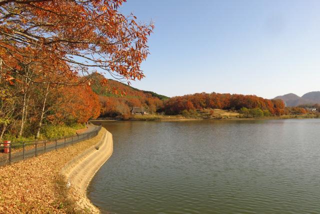 有馬富士公園_福島池の周回ルート