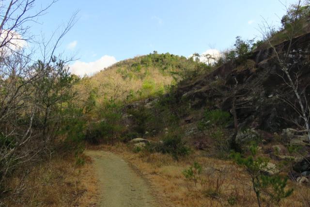 三草山登山道