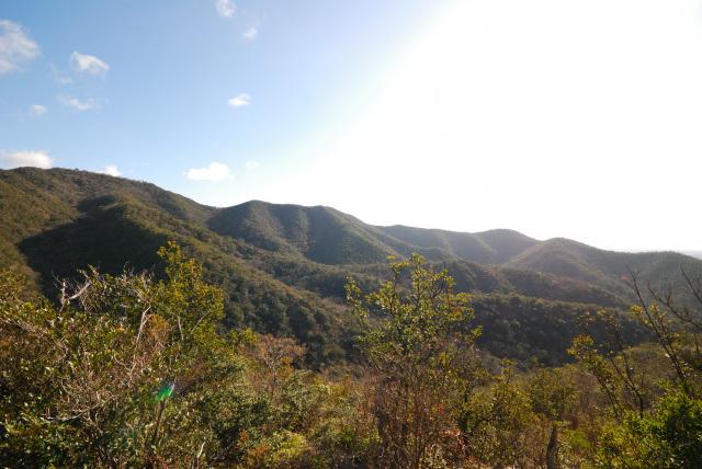 三草山登山道_周回コース稜線