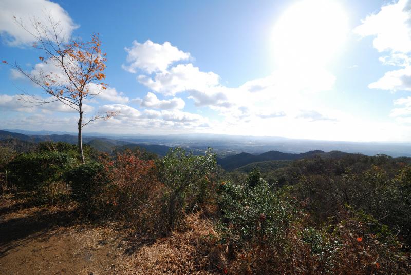 三草山_山頂から眺める播磨平野